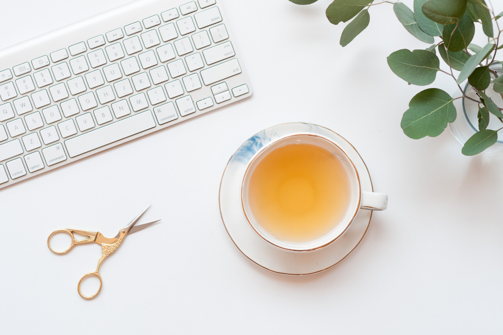 Tea Cup and Keyboard | The 14 Most Popular Teas From Around The World